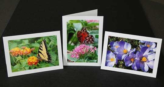 Maureen_cards_2.jpg