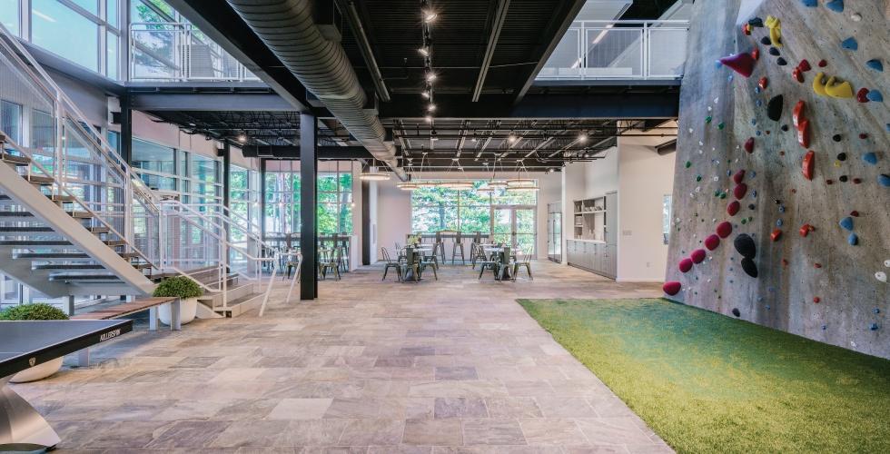 Innovative Workspaces_Climbing-Wall-Laddawn.jpg
